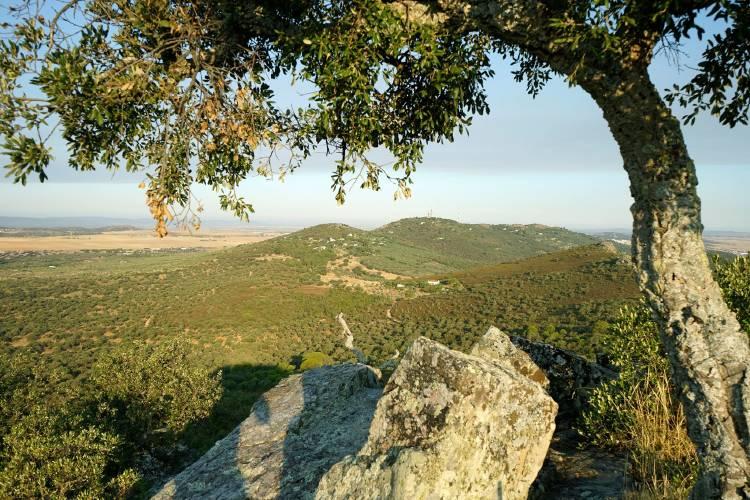 Sierra de la Mosca, Extremadura