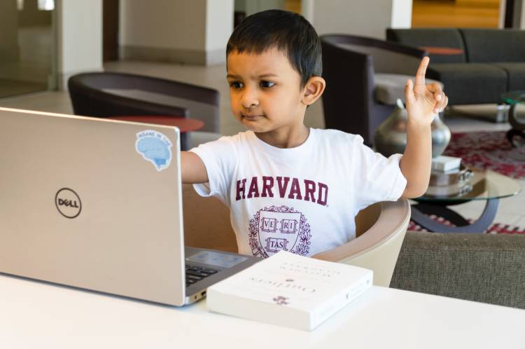 Harvard - Photo by Rohit Farmer on Unsplash