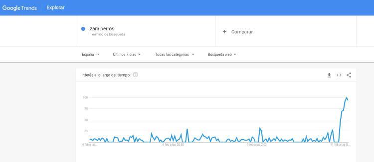 zara perros google trends