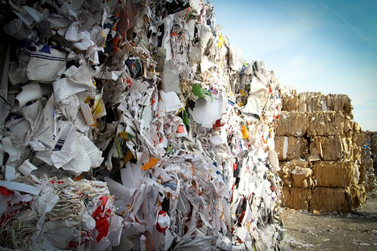 Reciclaje: papeles en la basura